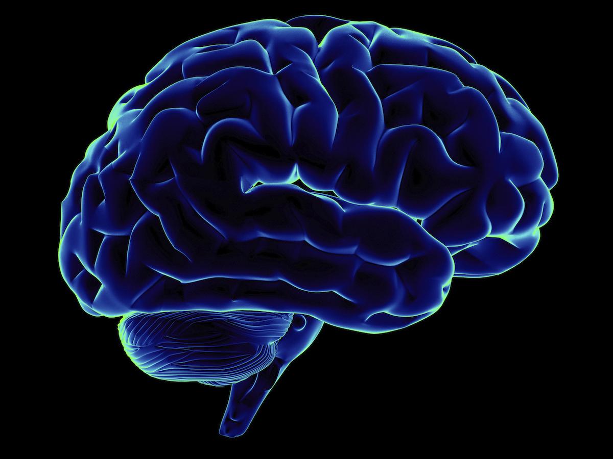 怠け者ほど「脳」のことを知ってパフォーマンスを上げよう