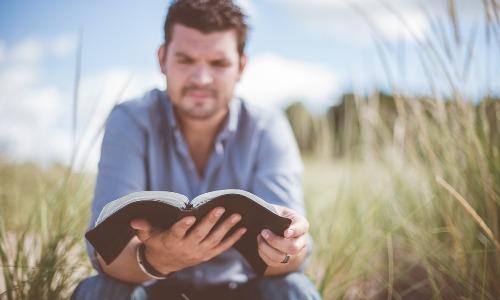 読書をすると頭が悪くなる?